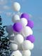 PURPLE AND WHITE BALLOONS, SASKATOON