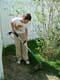 BOY USING EDGE TRIMMER TO CUT WEEDS, SASKATOON