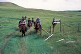 PEO ACT OUT  SK   WS21758D  NMR  PEOPLE ON TRAIL RIDEGRASSLANDS NAT. PK.        07/..© WAYNE SHIELS                ALL RIGHTS RESERVEDANIMALS;GRASSLANDS;GRASSLANDS_NP;HORSES;NP_;OUTDOORS;PEOPLE;PLAINS;PRAIRIES;RURAL;SASKATCHEWAN;SK_;SUMMER;TOURISM;TRAIL_RIDES;WESTERNLONE PINE PHOTO              (306) 683-0889