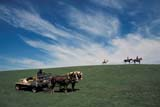 PEO ACT OUT  SK   WS21761D  NMR  PEOPLE ON TRAIL RIDEGRASSLANDS NAT. PK.        07/..© WAYNE SHIELS                ALL RIGHTS RESERVEDANIMALS;GRASSLANDS;GRASSLANDS_NP;HORSES;NP_;OUTDOORS;PEOPLE;PLAINS;PRAIRIES;RURAL;SASKATCHEWAN;SK_;SUMMER;TOURISM;TRAIL_RIDES;WAGONS;WESTERNLONE PINE PHOTO              (306) 683-0889