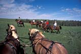 PEO ACT OUT  SK   WS21762D  NMR  PEOPLE ON TRAIL RIDEGRASSLANDS NAT. PK.        07/..© WAYNE SHIELS                ALL RIGHTS RESERVEDANIMALS;GRASSLANDS;GRASSLANDS_NP;HORSES;NP_;OUTDOORS;PEOPLE;PLAINS;PRAIRIES;RURAL;SASKATCHEWAN;SK_;SUMMER;TOURISM;TRAIL_RIDES;WESTERNLONE PINE PHOTO              (306) 683-0889