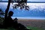 PEO ACT SUM  SK   WS21392D  MRWOMAN READING BOOK UNDER TREE AT LAKESHOREDANIELSON PROV PK            07© WAYNE SHIELS                ALL RIGHTS RESERVEDACTIVITIES;COTTAGE;DANIELSON_PP;FEMALE;LAKES;MR_;OUTDOORS;PARKS;PEOPLE;PLAINS;PP_;PRAIRIES;QUIET;READING;RECREATION;SASKATCHEWAN;SK_;SUMMER;WATERLONE PINE PHOTO              (306) 683-0889