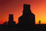 PEO ACT SUM  SK  CWN02A018D  (DC)  MRBOY RIDING PAST GRAIN ELEVATOR AT SUNSET OSLER                                   08/27              © CLARENCE W. NORRIS         ALL RIGHTS RESERVEDACTIVITIES;BIKING;COMPOSITE;ELEVATORS;MALE;MR_;OSLER;OUTDOORS;PEOPLE;PLAINS;PRAIRIES;RURAL;SASKATCHEWAN;SCENES;SILHOUETTE;SK_;SKY;STRUCTURES;SUMMER;SUNSETSLONE PINE PHOTO                  (306) 683-0889