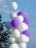 PEO ACT SUM  SK   CWN02T0028D  VTPURPLE AND WHITE BALLOONSCAMECO VICTORIA PARK SUMMER FESTIVALSASKATOON                            06..© CLARENCE W. NORRIS           ALL RIGHTS RESERVEDBALLOONS;BULLETINS;FESTIVALS;FUN;OUTDOORS;PLAINS;PRAIRIES;RECREATION;SASKATCHEWAN;SASKATOON;SK_;SUMMER;VTLLONE PINE PHOTO                  (306) 683-0889