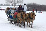 PEO ACT WIN  SK  WDS05H0425HDX WINTER SLEIGH RIDESSASKATOON                      ../..© WAYNE SHIELS                ALL RIGHTS RESERVEDACTIVITIES;ANIMALS;FUN;GROUPS;HORSES;OUTDOORS;PEOPLE;PLAINS;PRAIRIES;RECREATION;RURAL;SASKATCHEWAN;SASKATOON;SK_;SLEIGHS;SNOW;TRANSPORTATION;WINTERLONE PINE PHOTO              (306) 683-0889