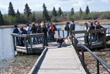PEO YOU MIS  AB  DSR1001249DSTUDENTS ON AQUATIC ECOSYSTEM TOUR, ASTOTIN LAKEELK ISLAND NAT PARK         05/..© DUANE S. RADFORD         ALL RIGHTS RESERVEDAB_;ACTIVITIES;ALBERTA;ASTOTIN_LAKE;CO_ED;CONSERVATION;DOCKS;ECOLOGY;EDUCATION;ELK_ISLAND_NP;LAKES;NP_;OUTDOORS;PARKLAND;PEOPLE;PLAINS;PRAIRIES;STUDENTS;SUMMER;TEENS;WATER;YOUTHLONE PINE PHOTO              (306) 683-0889