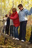 PEO ACT OUT  SK  WDS08I6975DX  VTTEAM BUILDING ACTIVITIES FOR TEACHERS AND SUPPORT STAFFCAMP SHEKINAH                 09© WAYNE SHIELS               ALL RIGHTS RESERVEDACTIVITIES;ADULTS;AUTUMN;BALANCE;BEAMS;CAMP_SHEKINAH;FEMALE;FOREST;LOGS;OUTDOORS;PEOPLE;PLAINS;PRAIRIES;SASKATCHEWAN;SK_;SUNGLASSES;TEAMWORK;TREES;VTLLONE PINE PHOTO              (306) 683-0889