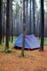 TENT IN LODGEPOLE PINES, CYPRESS HILLS PROVINCIAL PARK