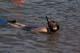 BOY SNORKELLING IN LAKE, WASKESIU LAKE, PRINCE ALBERT NATIONAL PARK