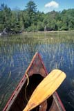 REC CAN MIS  ON  BMM1000065D  VT    CANOE BOW IN REEDSLAKE JOSEPH                      ../..© BEV McMULLEN                ALL RIGHTS RESERVEDACTIVITIES;BULLETINS;CANOEING;CANOES;CENTRAL;LAKES;LAKE_JOSEPH;ON_;ONTARIO;OUTDOORS;PADDLES;RECREATION;REEDS;SUMMER;VTL;WATER  LONE PINE PHOTO              (306) 683-0889