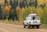 REC CAN MIS  SK     1115513D    TOYOTA 4-RUNNER, CANOE ON AUTUMN ROADPRINCE ALBERT NAT. PK.      09/11© CLARENCE W. NORRIS      ALL RIGHTS RESERVEDAUTOS;AUTUMN;BOREAL;CANOE;CANOEING;FOREST;NP_;OUTDOORS;PARKLAND;PARKS;PLAINS;PRAIRIES;PRINCE_ALBERT_NP;RECREATION;ROADS;SASKATCHEWAN;SCENES;SK_;TAMARACKS;TREESLONE PINE PHOTO              (306) 683-0889