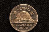 REC COI MIS  SK     2011617DBEAVER ON CANADA 5 CENT COINSASKATOON                      12/..© CLARENCE W. NORRIS     ALL RIGHTS RESERVEDANIMALS;BEAVERS;CANADIAN;COINS;MONEY;NICKELS;NUMBERS;PLAINS;PRAIRIES;PRINTING;RECREATION;SASKATCHEWAN;SASKATOON;SK_LONE PINE PHOTO              (306) 683-0889