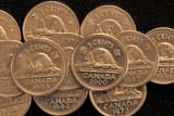 REC COI MIS  SK     2011624DBEAVER ON CANADA 5 CENT COINSASKATOON                      12/..© CLARENCE W. NORRIS     ALL RIGHTS RESERVEDANIMALS;BEAVERS;CANADIAN;COINS;MONEY;NICKELS;NUMBERS;PLAINS;PRAIRIES;RECREATION;SASKATCHEWAN;SASKATOON;SK_LONE PINE PHOTO              (306) 683-0889