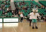 REC VOL MIS  SK  WDS06A8339DXHUSKIES MASCOTUNIVERISTY OF SASKATCHEWANSASKATOON                       ../..© WAYNE SHIELS                ALL RIGHTS RESERVEDACTIVITIES;ANIMALS;COSTUMES;DOGS;HUSKIES;INDOORS;MASCOTS;PEOPLE;PLAINS;PRAIRIES;RECREATION;SASKATCHEWAN;SASKATOON;SK_;SPORTS;SUMMER;TEAMS;UNIFORMS;UNIVERSITIES;UNIVERSITY_OF_SASKATCHEWAN;VOLLEYBALLLONE PINE PHOTO              (306) 683-0889