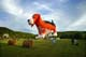 DOG-SHAPED HOT AIR BALLOON, SUSSEX BALLOON FESTIVAL, SUSSEX
