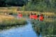 CANOES IN LILY PADS ON CREEK, LAC LA RONGE PROVINCIAL PARK