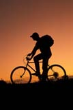 REC BIC MIS  SK     1510203D  MR  VT  TEENAGE BOY BICYCLING AT SUNSETOSLER                                08/21© CLARENCE W. NORRIS      ALL RIGHTS RESERVEDACTIVITIES;BICYCLING;BICYCLES;BULLETINS;MALE;MICHAEL;MR_;OSLER;OUTDOORS;PEOPLE;PLAINS;PRAIRIES;RECREATION;RURAL;SASKATCHEWAN;SCENES;SILHOUETTE;SK_;SKY;SUMMER;SUNSETS;TEENS;VTLLONE PINE PHOTO              (306) 683-0889