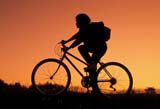REC BIC MIS  SK     1510223D  MRTEENAGE GIRL BICYCLING AT SUNSETOSLER                                09..© CLARENCE W. NORRIS      ALL RIGHTS RESERVEDACTIVITIES;BICYCLING;BICYCLES;BIKING;FEMALE;MR_;OSLER;OUTDOORS;PEOPLE;PLAINS;PRAIRIES;RECREATION;RURAL;SASKATCHEWAN;SCENES;SILHOUETTE;SK_;SKY;SUMMER;SUNSETS;TAMARA;TEENSLONE PINE PHOTO              (306) 683-0889