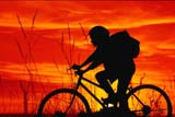 REC BIC MIS  SK  CWN02A037D  (DC)  MRGIRL BICYCLING AT SUNSET WITH GRASS IN FOREGROUNDOSLER                                   08/27              © CLARENCE W. NORRIS         ALL RIGHTS RESERVEDACTIVITIES;BICYCLING;BICYCLES;BIKING;COMPOSITE;FEMALE;GRASS;OSLER;MR_;OUTDOORS;PEOPLE;PLAINS;PRAIRIES;RECREATION;SASKATCHEWAN;SCENES;SILHOUETTE;SK_;SKY;SUMMER;SUNSETS;TAMARA;TEENSLONE PINE PHOTO                  (306) 683-0889