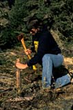 REC CAN MIS  SK     1512124D  MR  VT   MAN SPLITTING WOOD WITH AXELAC LA RONGE PROV. PK.    09/09© CLARENCE W. NORRIS      ALL RIGHTS RESERVEDACTIVITIES;AUTUMN;AXES;BOREAL;CAMPING;CANOEING;FIREWOOD;LAC_LA_RONGE_PP;MALE;MR_;OUTDOORS;PARKLAND;PARKS;PEOPLE;PP_;RECREATION;SASKATCHEWAN;SHIELD;SK_;VTL;WOOD  LONE PINE PHOTO              (306) 683-0889