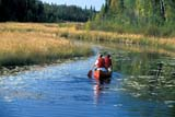 REC CAN MIS  SK     1512227D  MR   COUPLE CANOEING ON CREEKNEAR STANLEY MISSIONLAC LA RONGE PROV. PK.    09/09© CLARENCE W. NORRIS      ALL RIGHTS RESERVEDACTIVITIES;BOREAL;CANOEING;CO_ED;CREEKS;LAC_LA_RONGE_PP;LIFEJACKETS;MALE;MR_;OUTDOORS;PEOPLE;PP_;SAFETY;SASKATCHEWAN;SCENES;SK_;SPORTS;STANLEY_MISSION;SUMMER;WATERLONE PINE PHOTO              (306) 683-0889