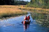 REC CAN MIS  SK     1512226D  MRCOUPLE CANOEING ON CREEK NEAR STANLEY MISSIONLAC LA RONGE PROV. PARK     099© CLARENCE W. NORRIS          ALL RIGHTS RESERVEDACTIVITIES;BOREAL;CANOEING;CO_ED;CREEKS;LAC_LA_RONGE_PP;LIFEJACKETS;MALE;MR_;OUTDOORS;PEOPLE;PP_;SAFETY;SASKATCHEWAN;SCENES;SK_;SPORTS;STANLEY_MISSION;SUMMER;WATERLONE PINE PHOTO                  (306) 683-0889