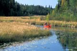 REC CAN MIS  SK     1512232D  MR  COUPLE CANOEING ON CREEK NEAR STANLEY MISSIONLAC LA RONGE PROV. PARK 09/09© CLARENCE W. NORRIS      ALL RIGHTS RESERVEDACTIVITIES;BOREAL;CANOEING;CO_ED;CREEKS;LAC_LA_RONGE_PP;LIFEJACKETS;MALE;MR_;OUTDOORS;PEOPLE;PP_;SAFETY;SASKATCHEWAN;SCENES;SK_;SPORTS;STANLEY_MISSION;SUMMER;WATERLONE PINE PHOTO              (306) 683-0889