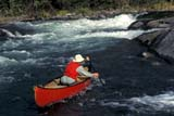 REC CAN MIS  SK     1513417D  MR SOLO CANOEIST AT UPPER FALLSNISTOWIAK FALLS, RAPID RIVERLAC LA RONGE PROV. PK.    09/10© CLARENCE W. NORRIS      ALL RIGHTS RESERVEDACTIVITIES;BOREAL;CANOEING;LIFEJACKETS;MALE;MR_;NISTOWIAK_FALLS;OUTDOORS;PEOPLE;PP_;RAPID_RIVER;RAPIDS;RECREATION;RIVERS;SAFETY;SASKATCHEWAN;SK_;SPORTS;SUMMER;WATER;WATERFALLSLONE PINE PHOTO              (306) 683-0889