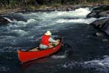 REC CAN MIS  SK     1513426D  MR SOLO CANOEIST AT UPPER FALLSNISTOWIAK FALLS, RAPID RIVERLAC LA RONGE PROV. PK.    09/10© CLARENCE W. NORRIS      ALL RIGHTS RESERVEDACTIVITIES;BOREAL;CANOEING;LIFEJACKETS;MALE;MR_;NISTOWIAK_FALLS;OUTDOORS;PEOPLE;PP_;RAPID_RIVER;RAPIDS;RECREATION;RIVERS;SAFETY;SASKATCHEWAN;SK_;SPORTS;SUMMER;WATER;WATERFALLSLONE PINE PHOTO              (306) 683-0889