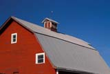 STR BAR MIS  SK     1901830DTIN ROOF OF RED BARNVANSCOY                           0411© CLARENCE W. NORRIS      ALL RIGHTS RESERVEDARCHITECTURE;BARNS;BUILDINGS;CUPOLAS;DATES;FARMING;NUMBERS;PLAINS;PRAIRIES;ROOFS;RURAL;SASKATCHEWAN;SK_;STEEL;STRUCTURES;SUMMER;VANSCOYLONE PINE PHOTO              (306) 683-0889