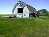 STR BAR MIS  SK  CWN02D0625DWHITE BARN, WIND BLOWING IN GRASSSTEWART VALLEY                    07/02© CLARENCE W.  NORRIS          ALL RIGHTS RESERVEDARCHITECTURE;BARNS;BUILDINGS;FARMING;GRASS;PLAINS;PRAIRIES;RURAL;SASKATCHEWAN;SCENES;SK_;STEWART_VALLEY;STRUCTURES;SUMMER;WINDLONE PINE PHOTO                  (306) 683-0889