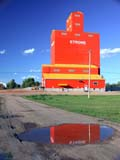 STR ELE PIO  AB  CWN02D3218D  VTPIONEER GRAIN ELEVATOR REFLECTED IN PUDDLESTROME                                 08/. .© CLARENCE W. NORRIS          ALL RIGHTS RESERVEDAB_;ALBERTA;BUILDINGS;ELEVATORS;FARMING;GEOMETRY;GRAVEL;PIONEER;PLAINS;PRAIRIES;PUDDLES;REFLECTIONS;ROADS;RURAL;SCENES;STROME;STRUCTURES;SUMMER;VTLLONE PINE PHOTO                  (306) 683-0889