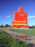 STR ELE PIO  AB  CWN02D3220D  VTPIONEER GRAIN ELEVATOR REFLECTED IN PUDDLESTROME                                 08/. .© CLARENCE W. NORRIS          ALL RIGHTS RESERVEDAB_;ALBERTA;BUILDINGS;ELEVATORS;FARMING;GEOMETRY;GRAVEL;PIONEER;PLAINS;PRAIRIES;PUDDLES;REFLECTIONS;ROADS;RURAL;SCENES;STROME;STRUCTURES;SUMMER;VTLLONE PINE PHOTO                  (306) 683-0889