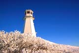 STR LIG MIS  SK     1519007DFROSTY BUSHES, LIGHTHOUSE AND MOON IN WINTERJACKFISH LAKECOCHIN                               1229© CLARENCE W. NORRIS        ALL RIGHTS RESERVEDCOCHIN;ELEMENTS;FROST;JACKFISH_LAKE;LIGHTHOUSES;MOON;PLAINS;PRAIRIES;SASKATCHEWAN;SCENES;STRUCTURES;SK_;WINTERLONE PINE PHOTO                (306) 683-0889