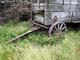 OLD WAGON IN PRAIRIE GRASS, ELSTOW